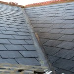 Re-Roof-1